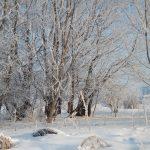 Зима в Пловдив